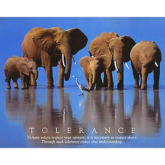 Poster - Studio B - 24x36 Tolerance Wall Art CJ1267