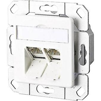 Network outlet Flush mount Insert with main panel CAT 6A 2 ports