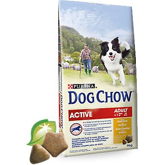 Dog Chow Active With Chicken (Dogs , Dog Food , Dry Food)