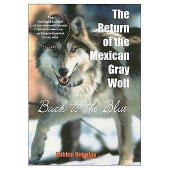 Retur av mexikanska grå vargen: tillbaka till blå