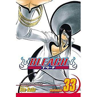 Bleach, volumen 33