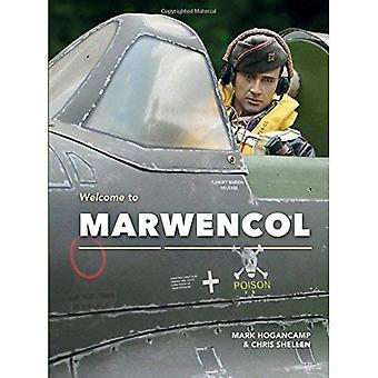 Welcome to Marwencol