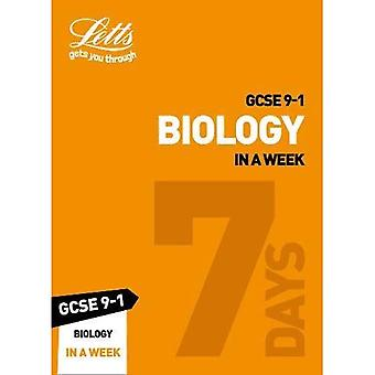 GCSE 9-1 biologi i en vecka (Letts GCSE 9-1 Revision framgång) (Letts GCSE 9-1 Revision framgång)