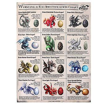 Age Of Dragons 19x25cm Wyrmling And Egg Identification Chart Canvas