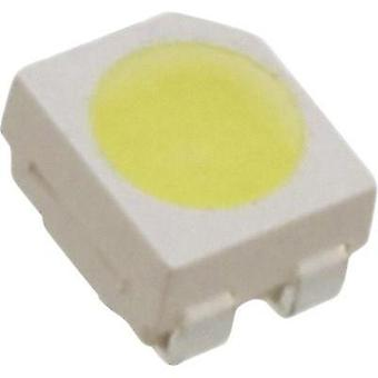 SMD LED PLCC4 Cold white 2.8 cd 35 mA