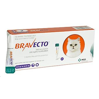 Bravecto 250mg Spot-On Solution For Medium Cats 2.8-6.25kg (6-14lbs)