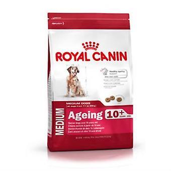 Royal Canin vergrijzing 10 + compleet hondenvoer 3kg