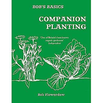 Bobs grunderna: Companion Planting (Häftad)