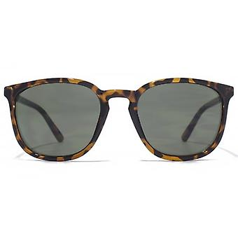 French Connection Skinny Temple Preppy Plastic Sunglasses In Dark Tortoiseshell