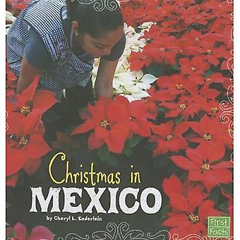 Natal no México