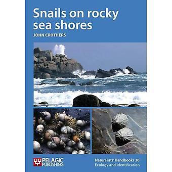 Snails on rocky sea shores (Naturalists' Handbook Series)