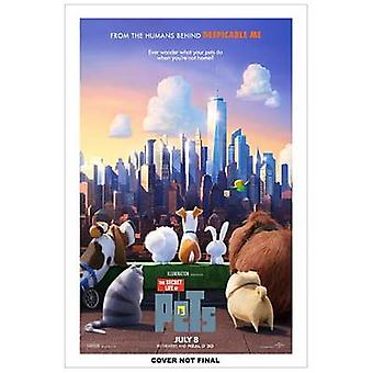 Pet in the City (Secret Life of Pets) by Golden Books - Golden Books